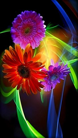 3d-wallpapers-colorful-abstract-flowers-wallpaper-desktop-wallpapers-high-definition-cool-colourful-download-free-best-windows-1920x1080